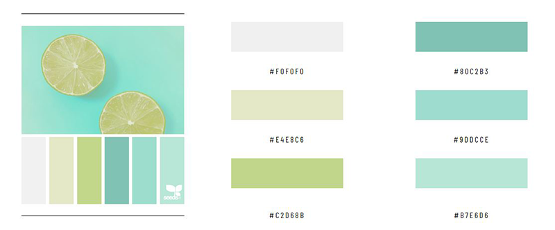 Website Konzept - die Farbgestaltung
